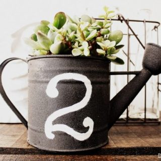 How To Make a Succulent Planter from Thrifted Watering Can