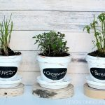 Chalkboard Herb Pots & Michaels/Hometalk In-Person Pinterest Party!