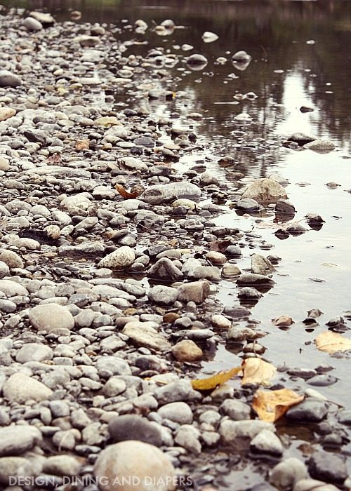 Tips For Planning A Fall Picnic by the river
