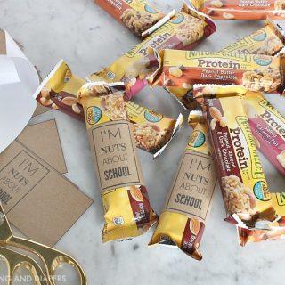 Easy School Snack Idea