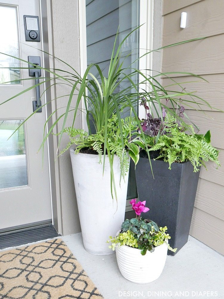These large planters for your front porch are a classic look yet make such a statement!