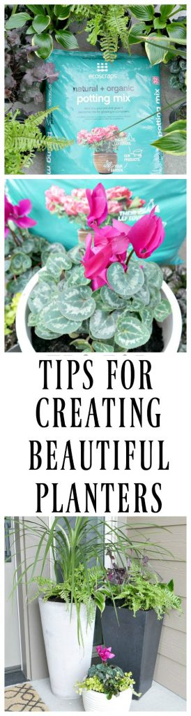 Spruce up your porch for spring with these front porch planter ideas ! Get ideas on the best plants for your front porch and planting tips.