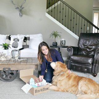 Treat Your Dog With BarkBox