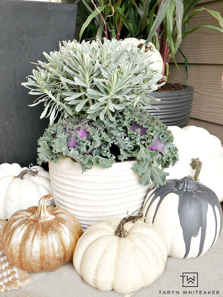 This Elegant Fall Porch design can be easily recreated using millet plants, kale and tons of faux white pumpkins!