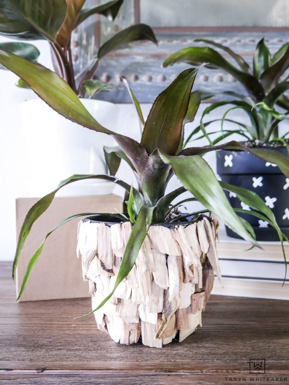 Learn how to make these DIY Wood Chip Pots! These small planters have a great look for summer and add a little tropical decor to your home.