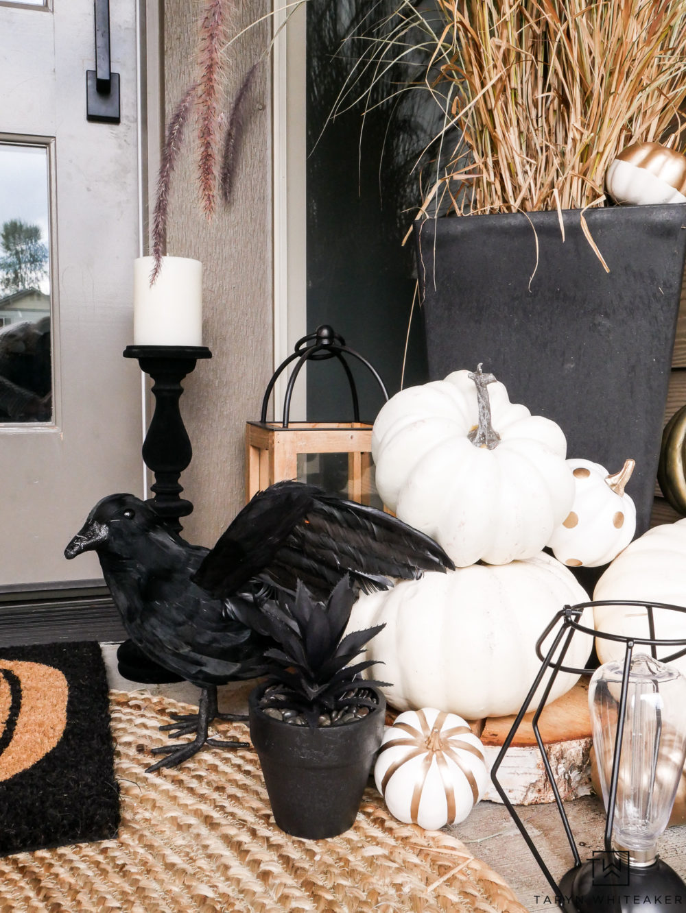 Cute and creepy Halloween Porch with black crows and black succulents!