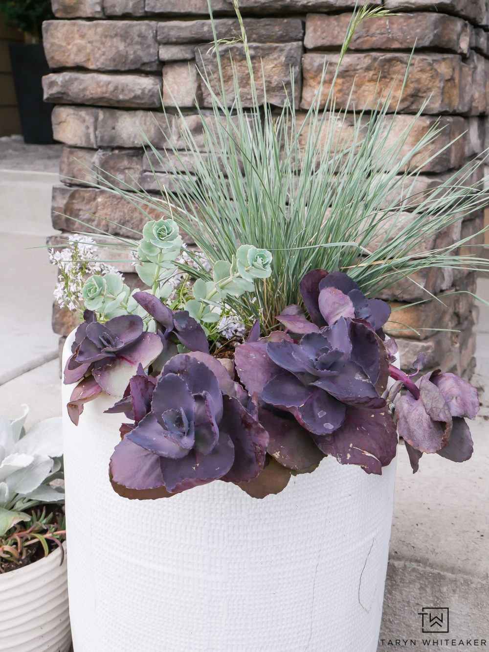 Succulent Planters! Love all the deep earth tone colors together.