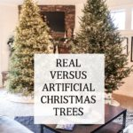 Real Versus Artificial Christmas Trees