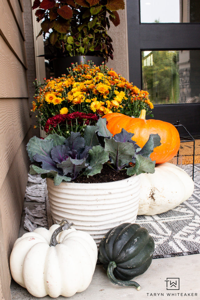 This Earth Tone Fall Porch is full of traditional fall colors but also has a nice modern look to it. Love all the orange mums and heirloom pumpkins.