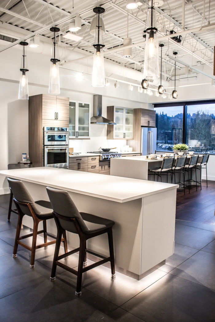 Contemporary modern kitchen with flat panel cabinets and frosted front accents.